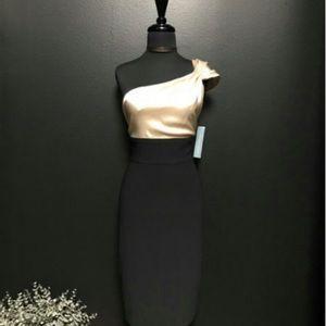 BEAUTIFUL ONE SHOULDER DRESS